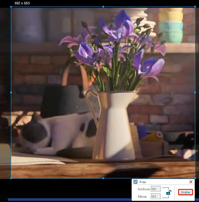 descargar anime con renee video editor pro