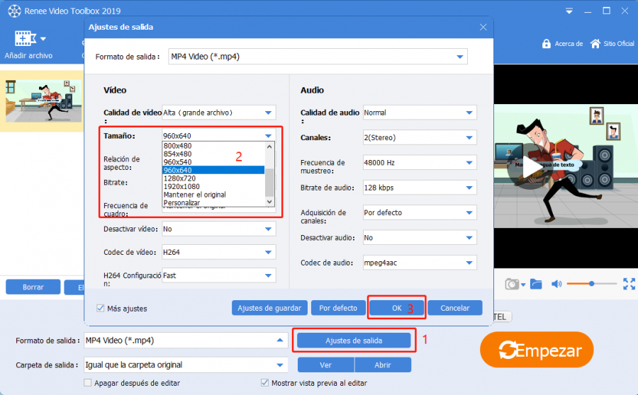 zoom video con renee video editor